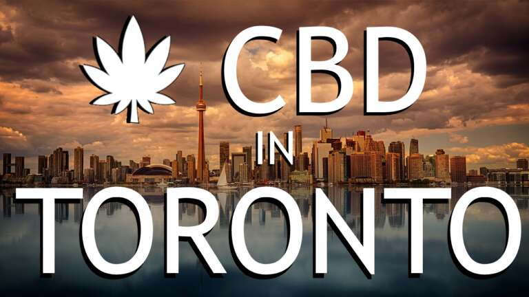 Buy CBD Oil in Toronto